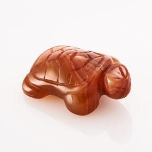 Черепаха сердолик  3 см