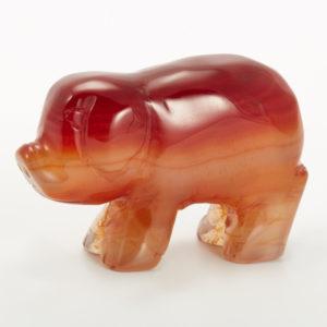 Свинка сердолик  4,5-5 см